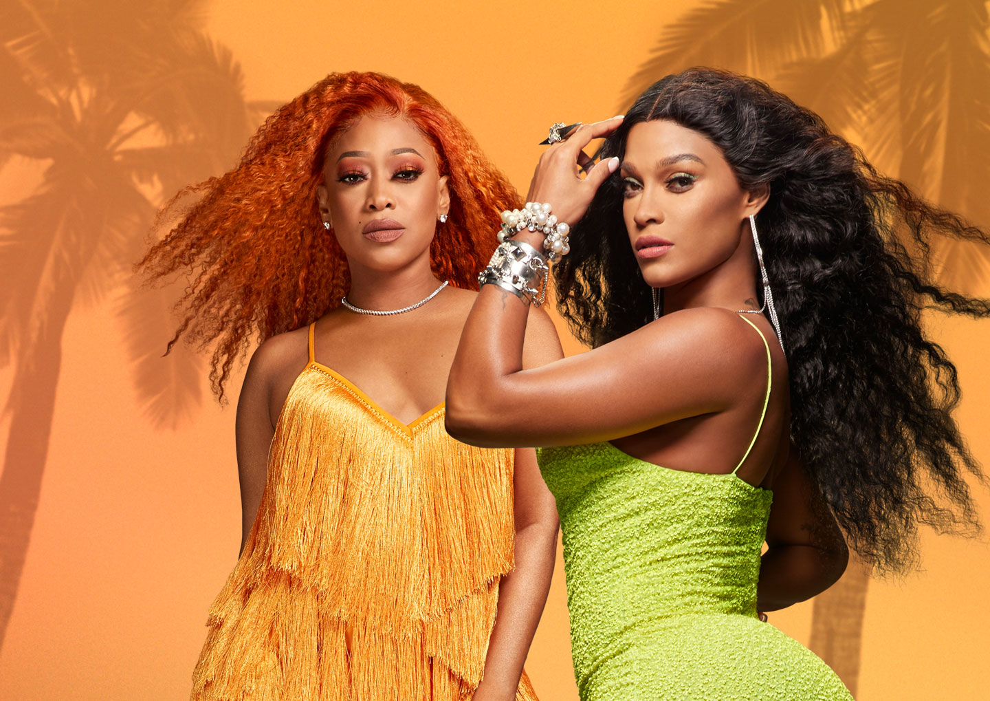 Love & Hip Hop Miami header image